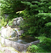 尾瀬岩鞍湧水