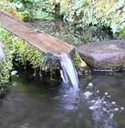伊閑町の清水