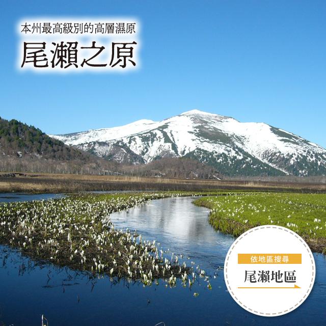 尾瀨國立公園 尾瀨之原
